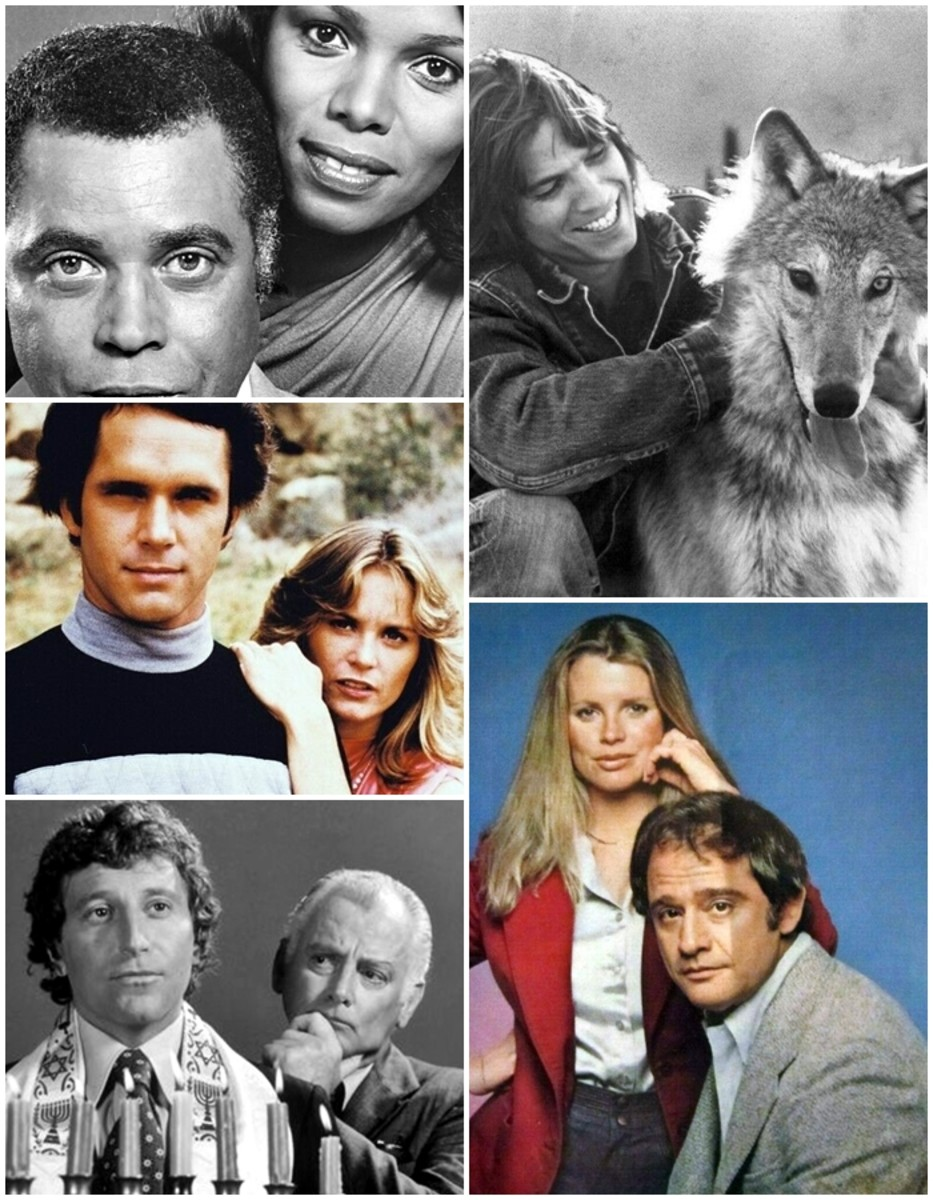 Short-Lived and Easily Forgotten TV Series From the '70s
