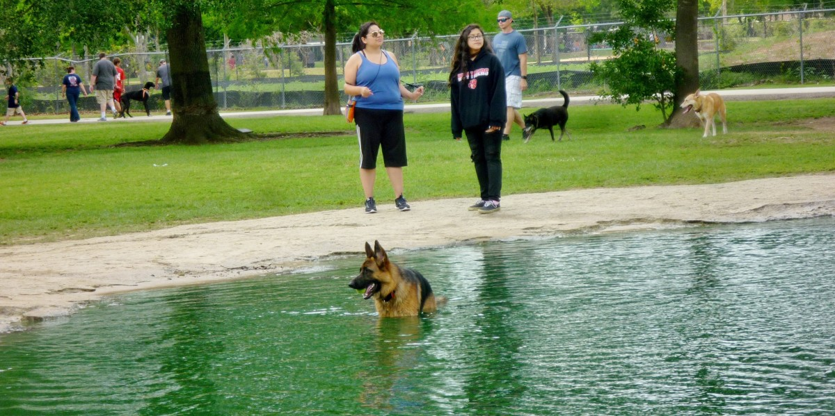 Playtime in the water