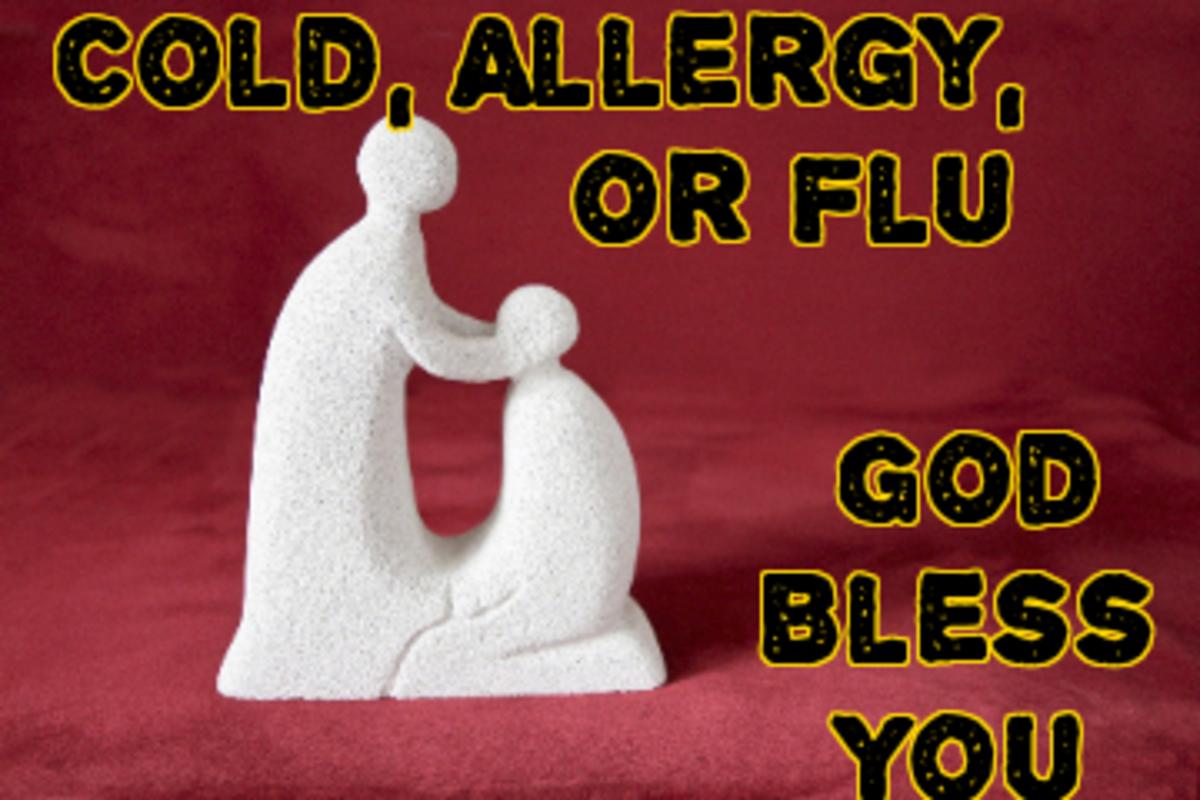 Poem: Cold, Allergy or Flu: God Bless You