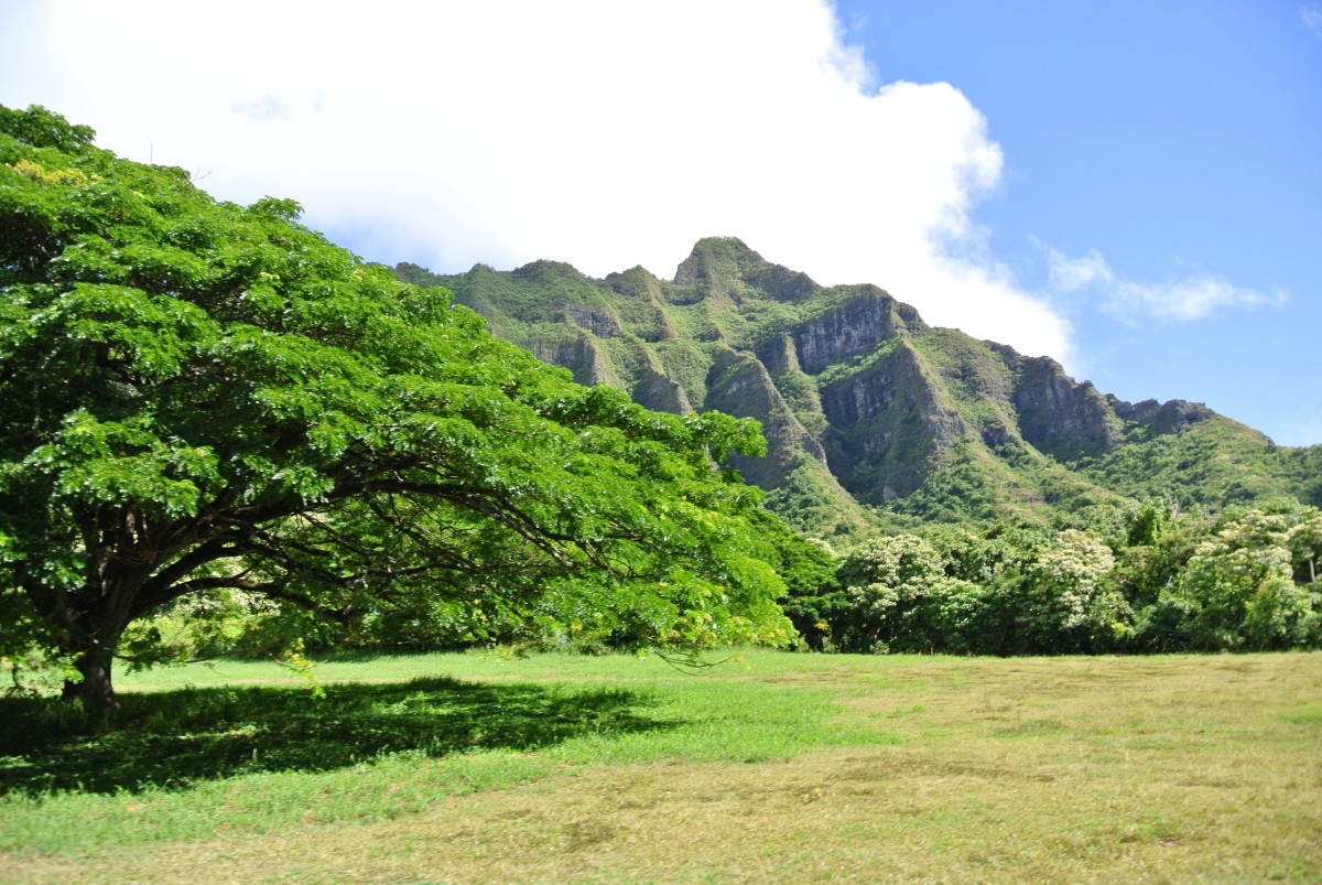 a-few-of-the-best-places-to-eat-in-hawaii-honolulu-oahu