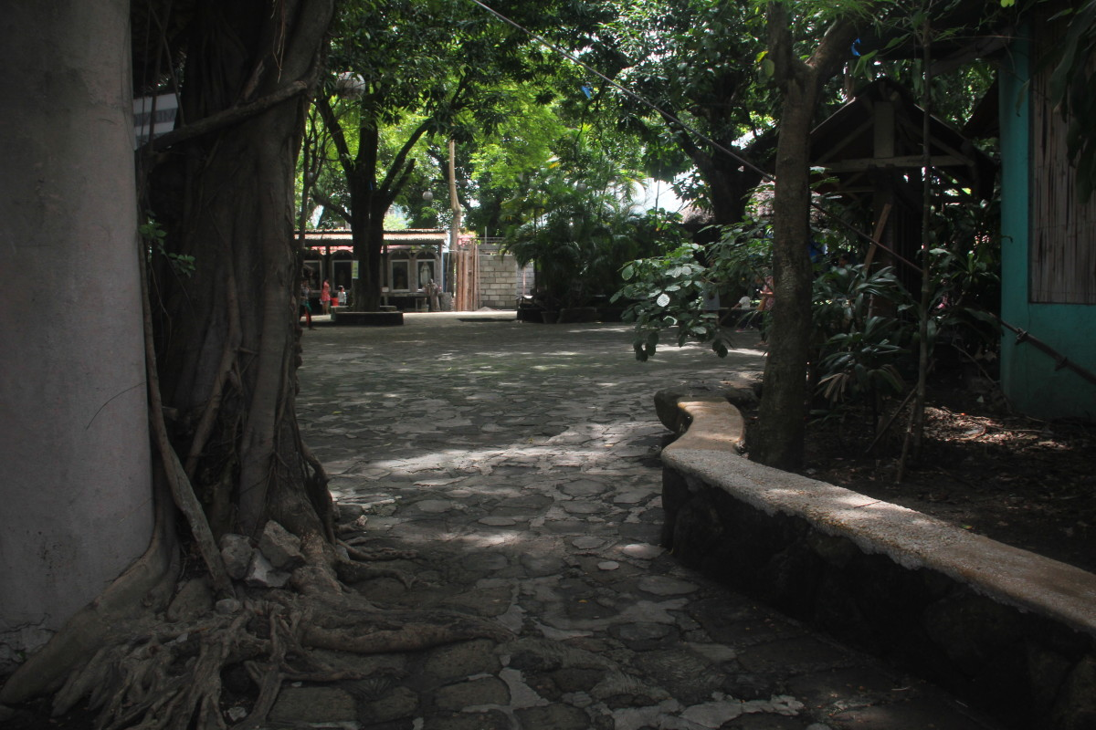 The church surroundings, view from the entrance of the ossuary garden (Photo by the author)