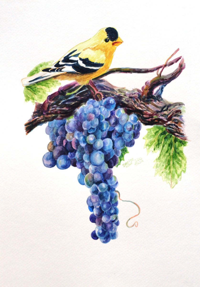 Commissioned Goldfinch and Grapes