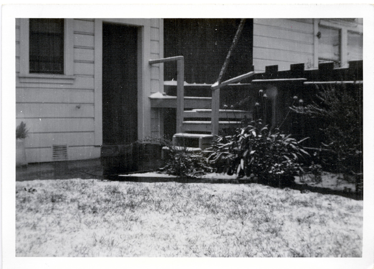 An extremely rare sight in San Francisco!  Note how thin is the coat of snow.  Taken circa February, 1963