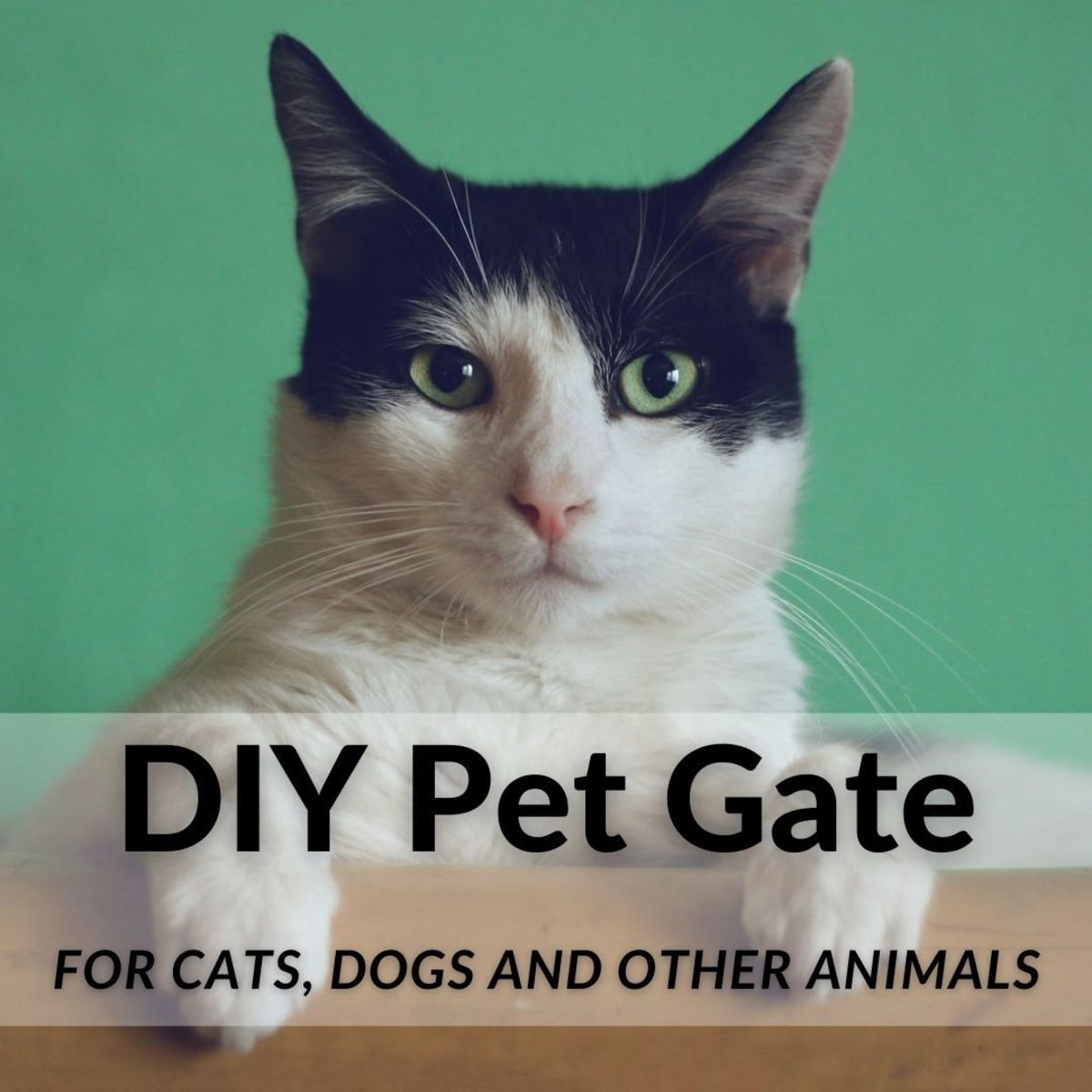 How to Build a Free-Standing Cat, Dog, or Pet Gate Cheaply, Without Tools