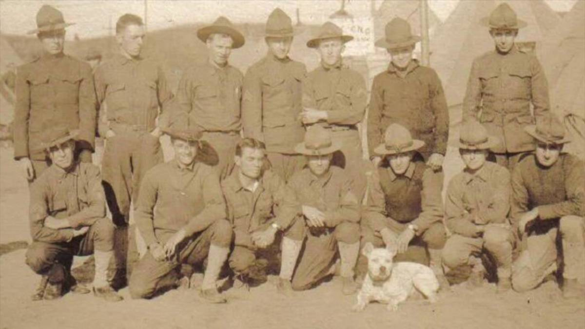 Sergeant Stubby with members of the 102nd infantry unit