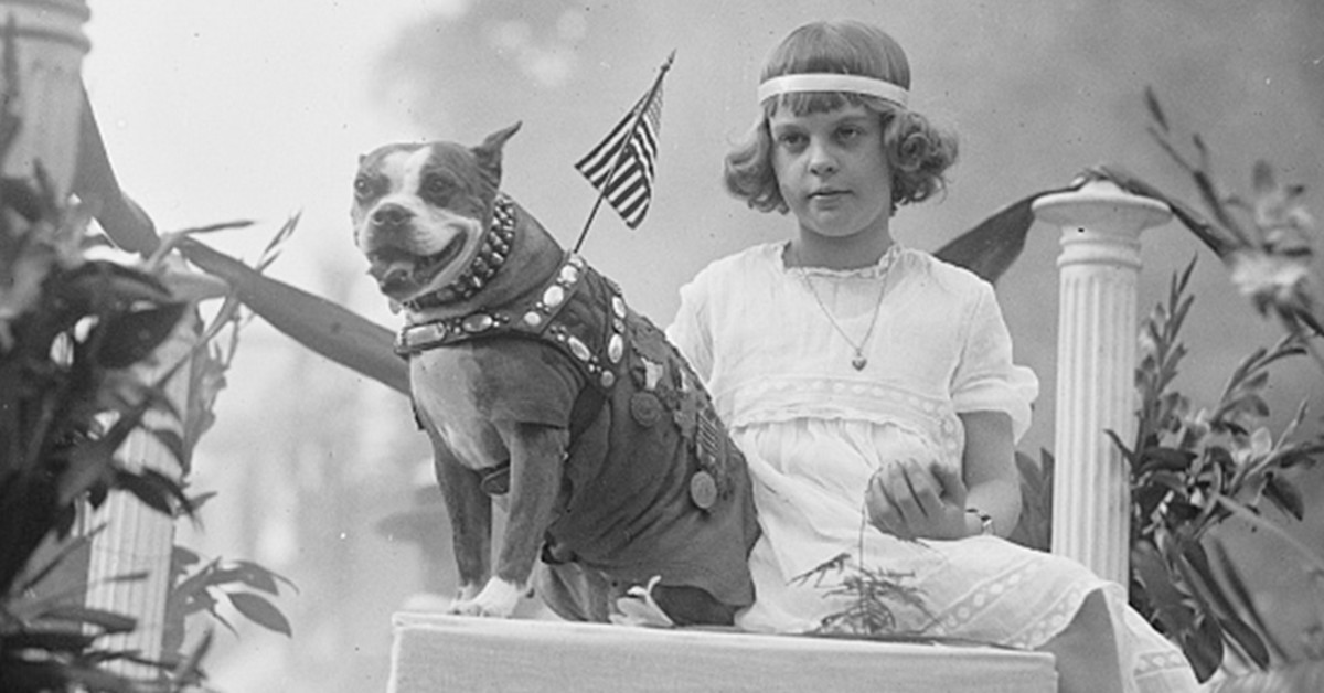 Sergeant Stubby selling victory bonds