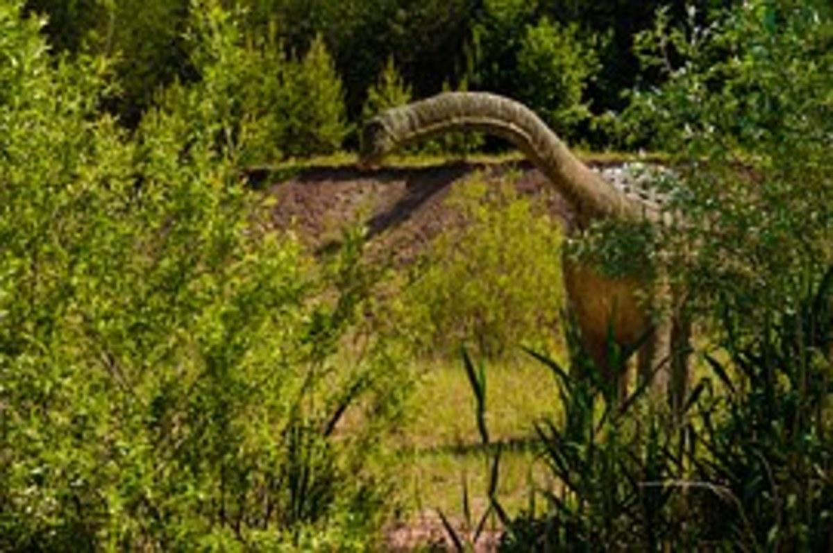 Brochiosaurus