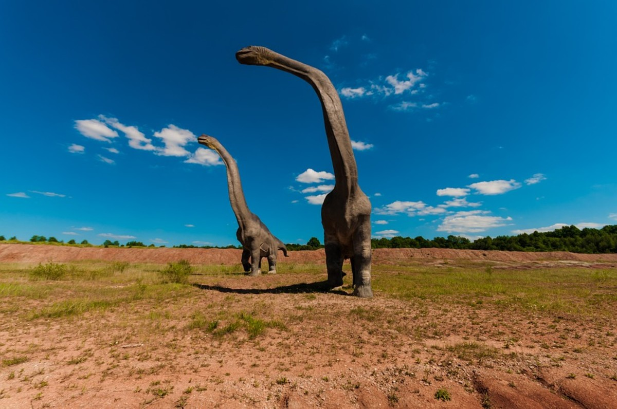 These dinosaur have very long necks