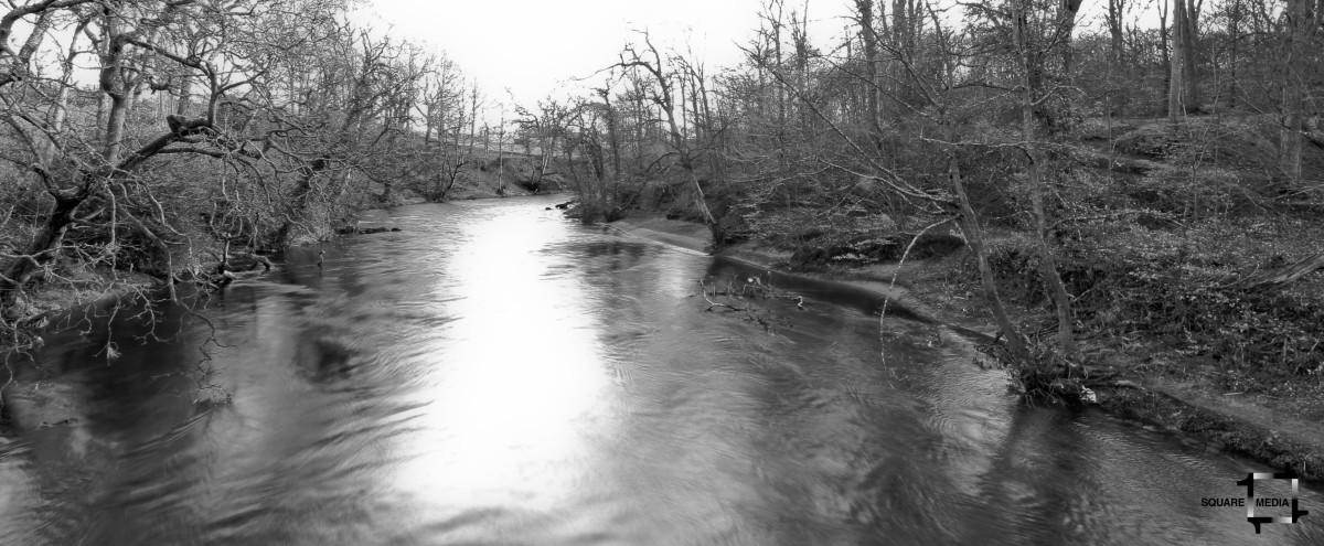 The River: A Short Story