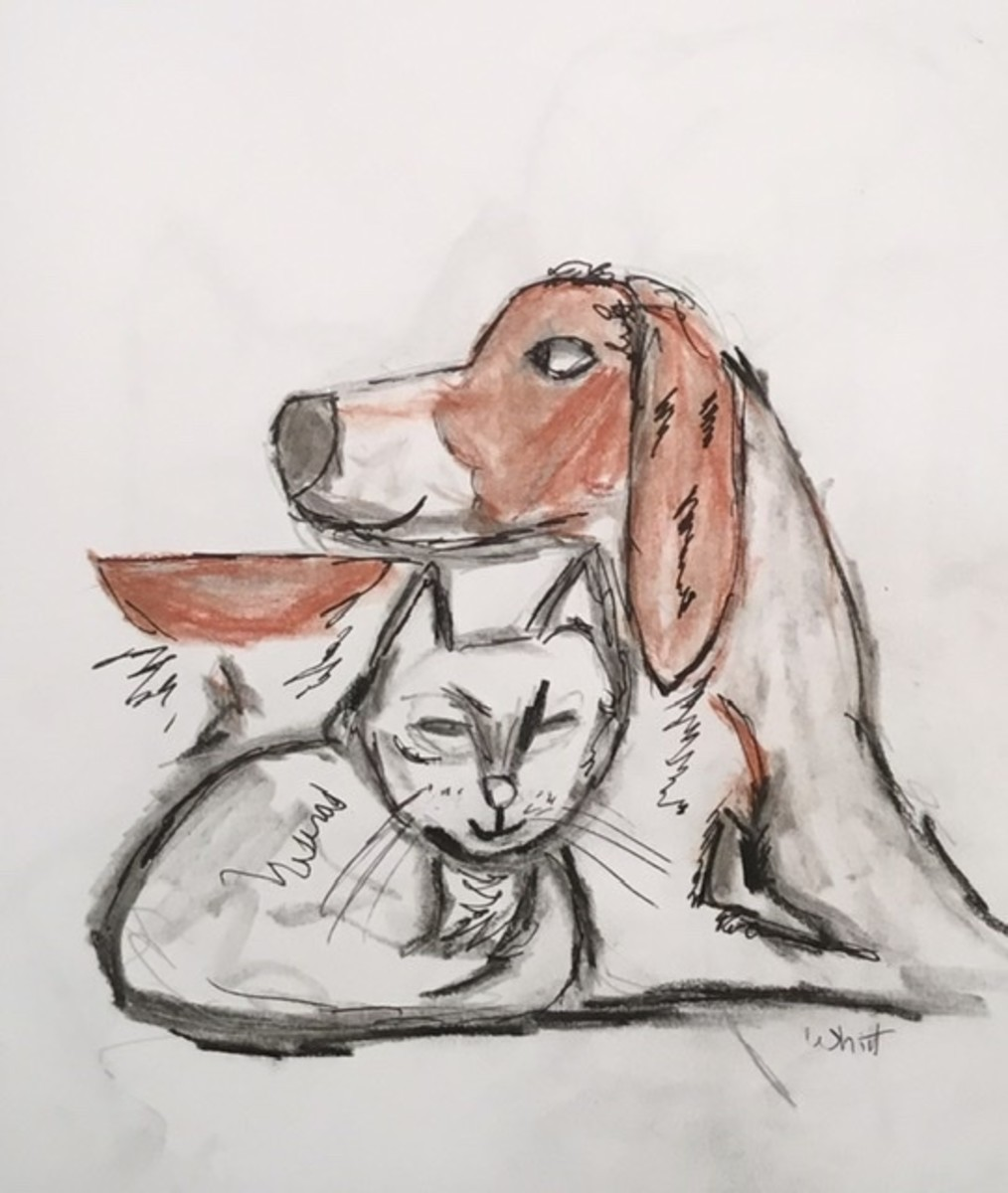 dog-eared-joe-and-cat-cat-a-childrens-story