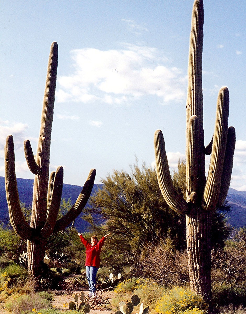 Me hamming it up in the Saguaro National Park
