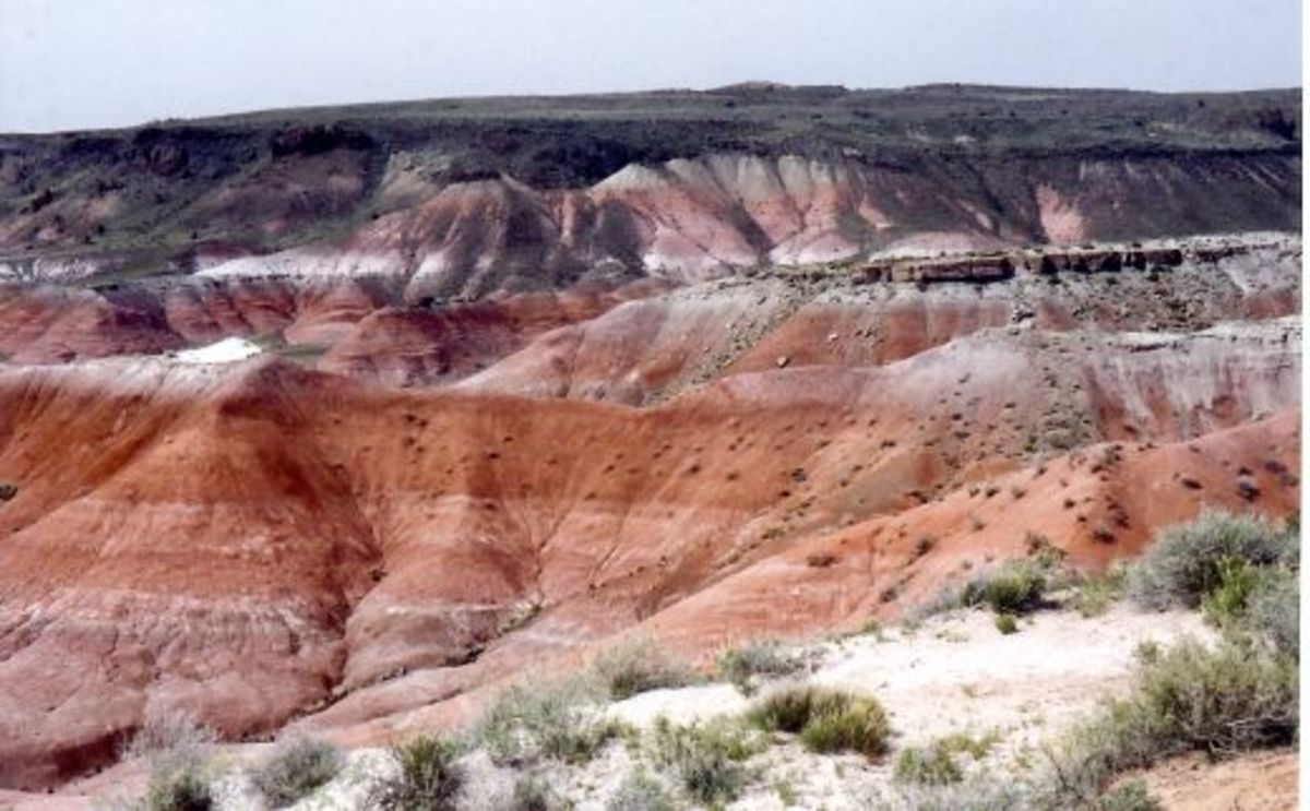 Just one of many great places in Arizona...The Painted Desert