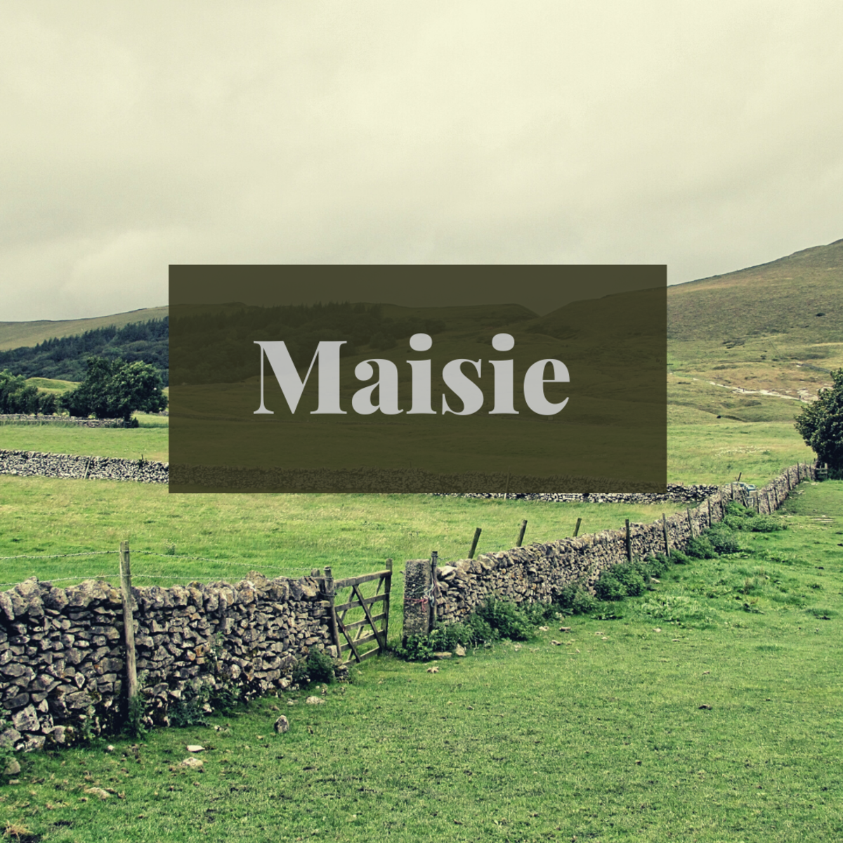Maisie is a beautiful cottagecore name based in nature.