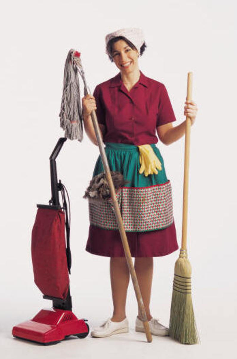 Owning a Profitable Home Cleaning Service