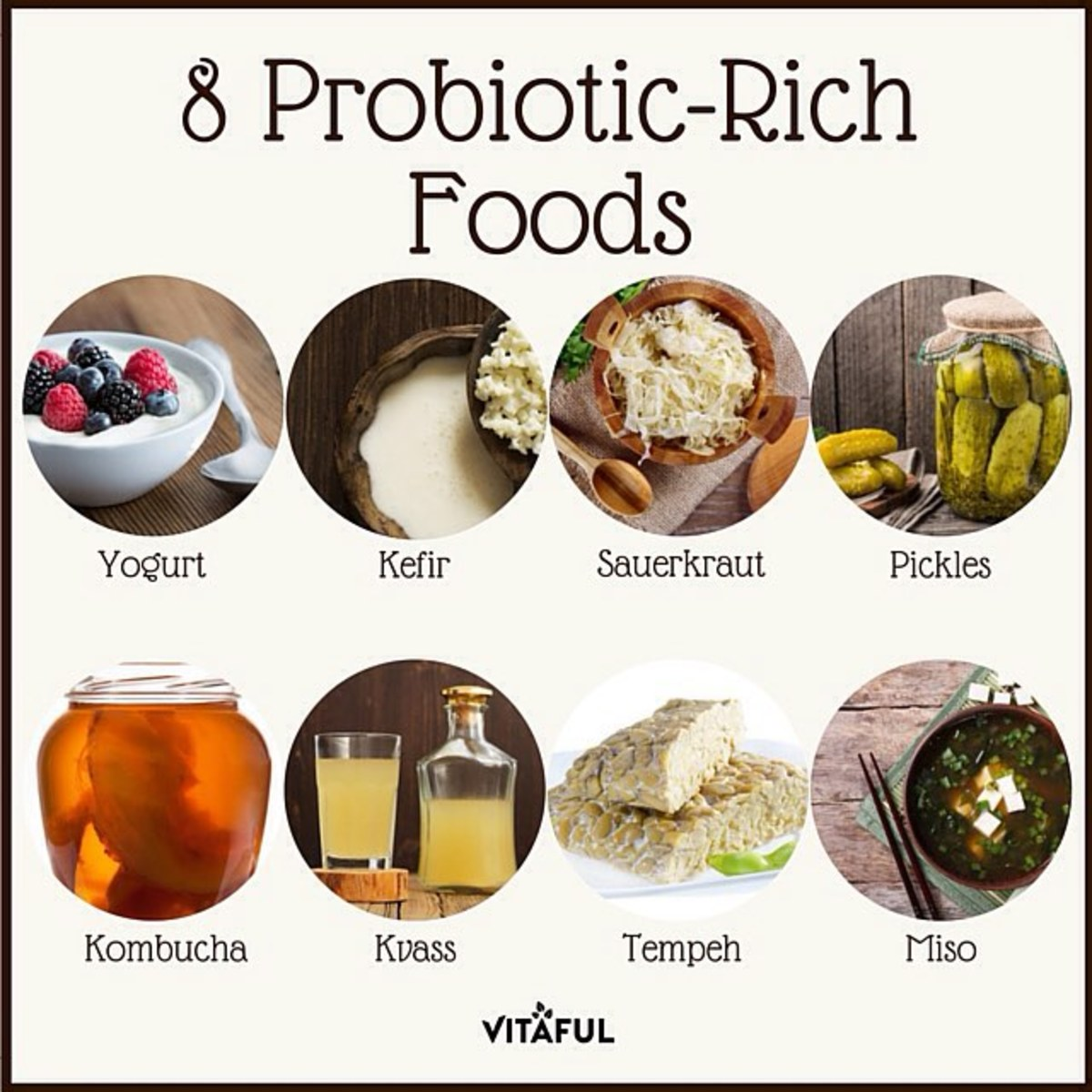 What Foods Are High In Lactobacillus