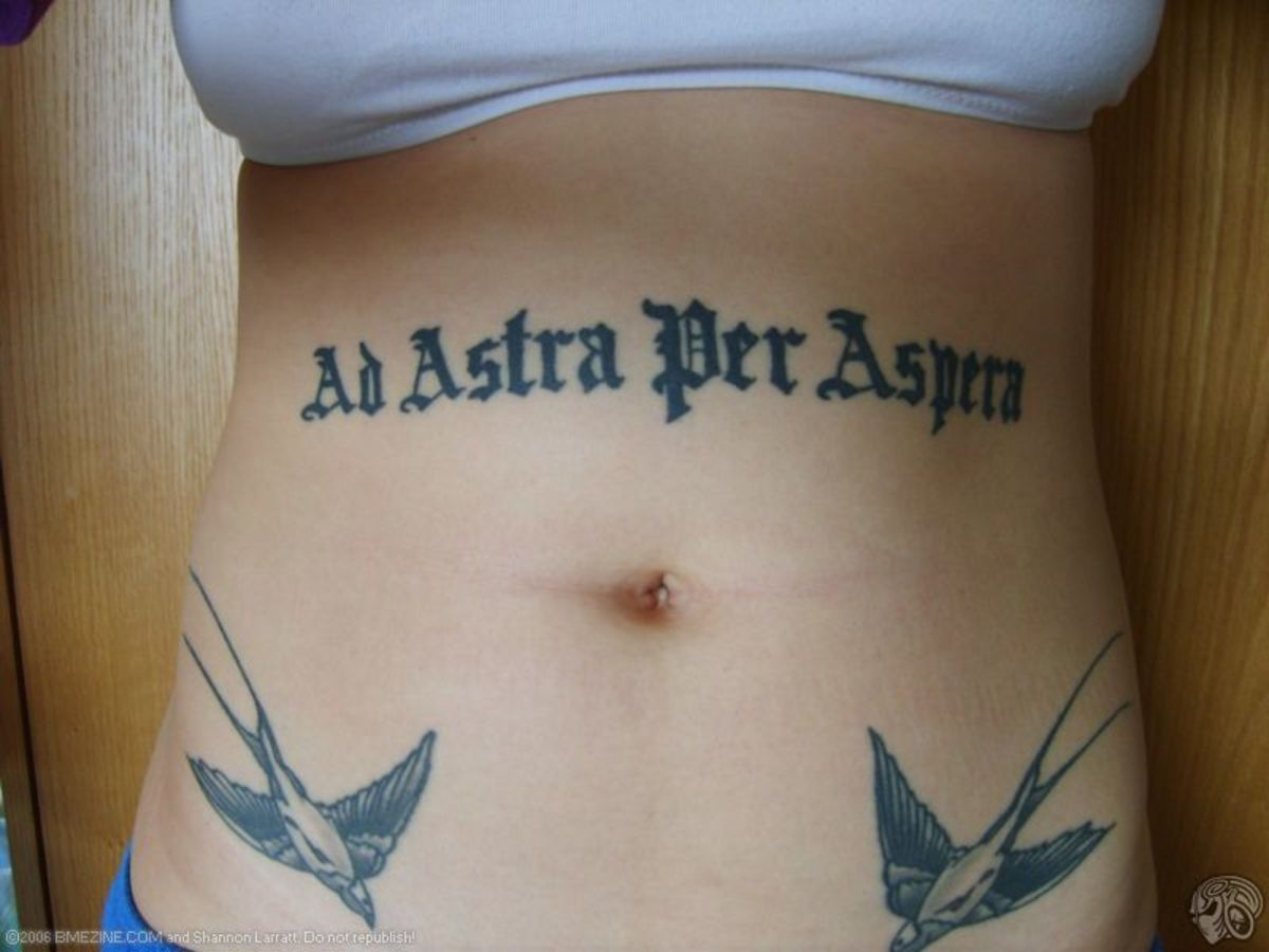 "Ad astra per aspera: ""To the stars through adversity,"" or ""a rough road leads to the stars."""