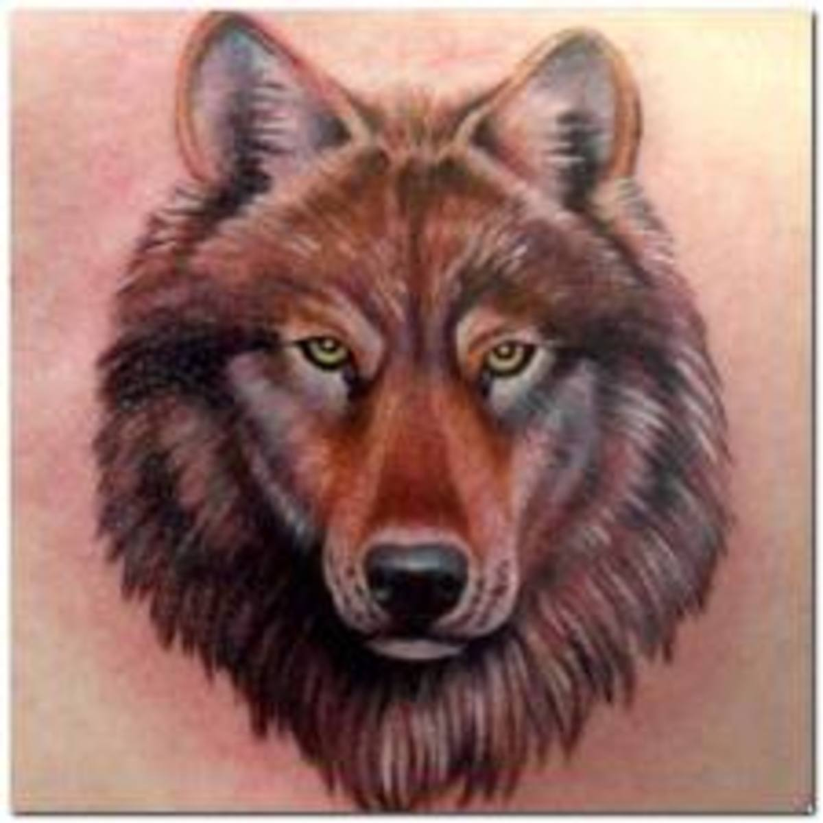 Wolf Tattoos Designs Ideas And Meaning: Wolf Tattoos: Designs, Ideas, And Meanings