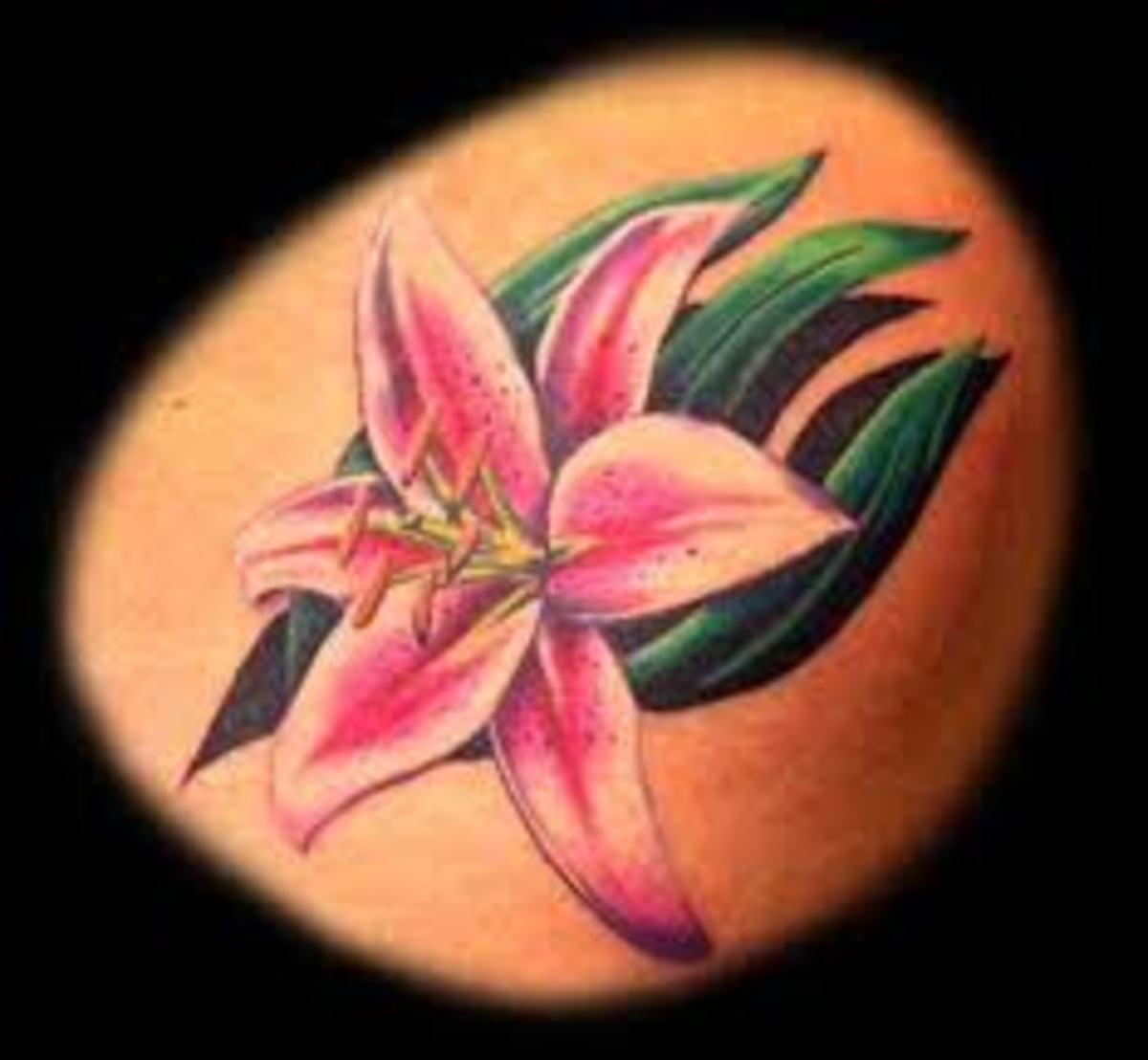 Lily tattoos and meanings for Lily tattoo meaning