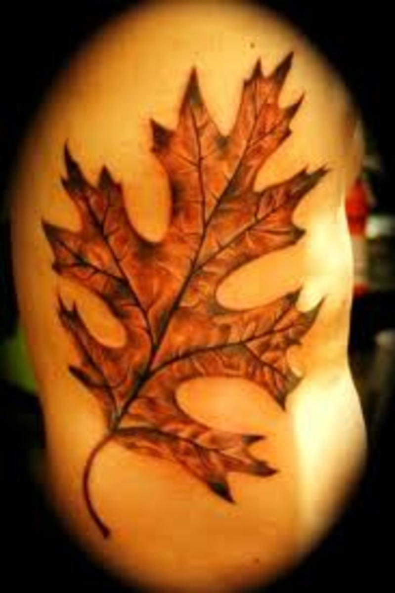 Leaf Tattoo Designs Ideas And Meanings Tatring