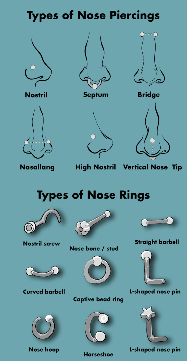 Types of nose rings and nose piercings