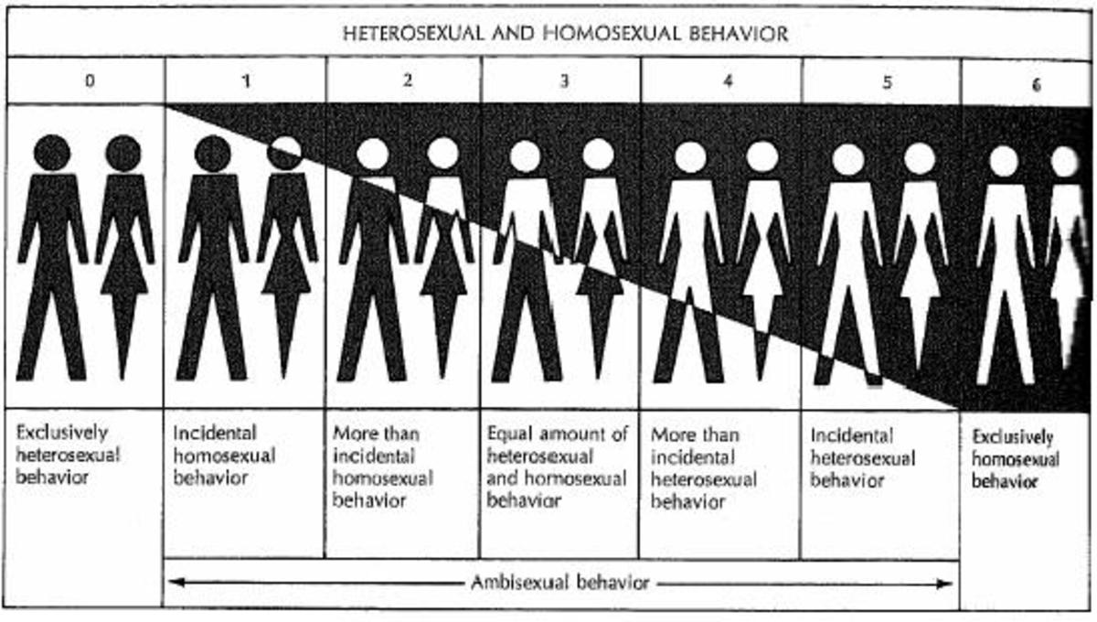 "Asexuality - even forgotten by the Kinsey Scale! (Asexuals being catergorized merely as ""X"" in the initial research papers.)"