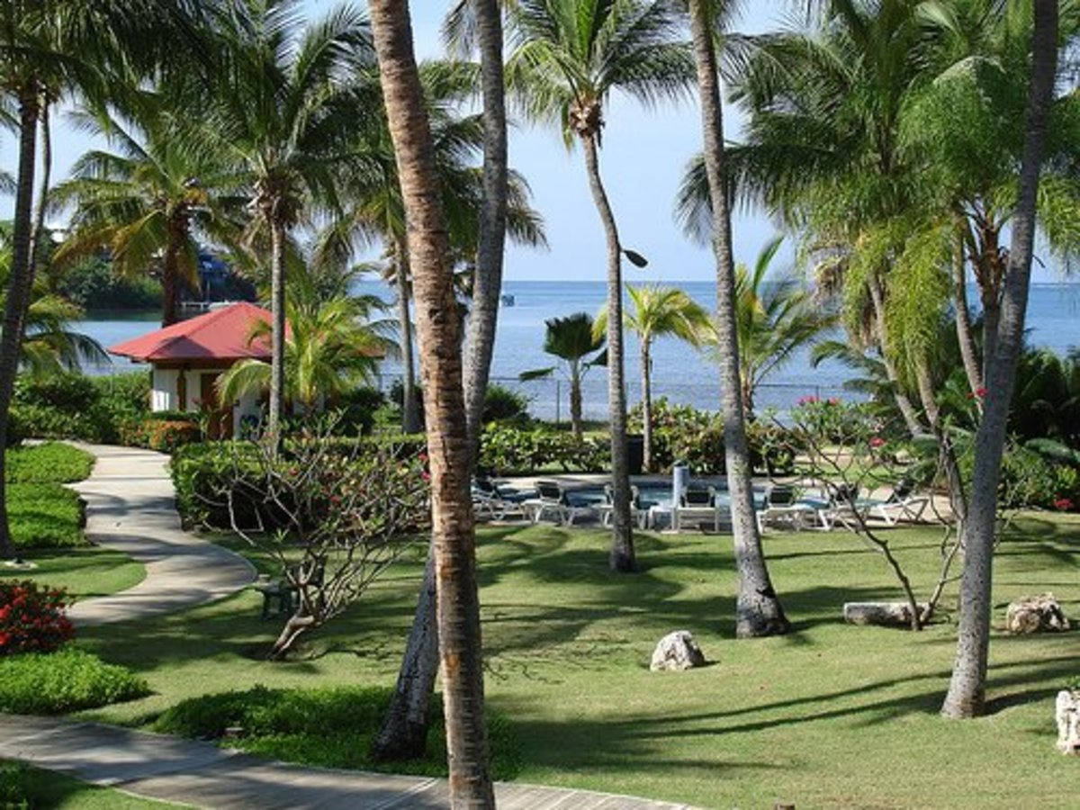 How to Rescind a Timeshare Purchase | ToughNickel