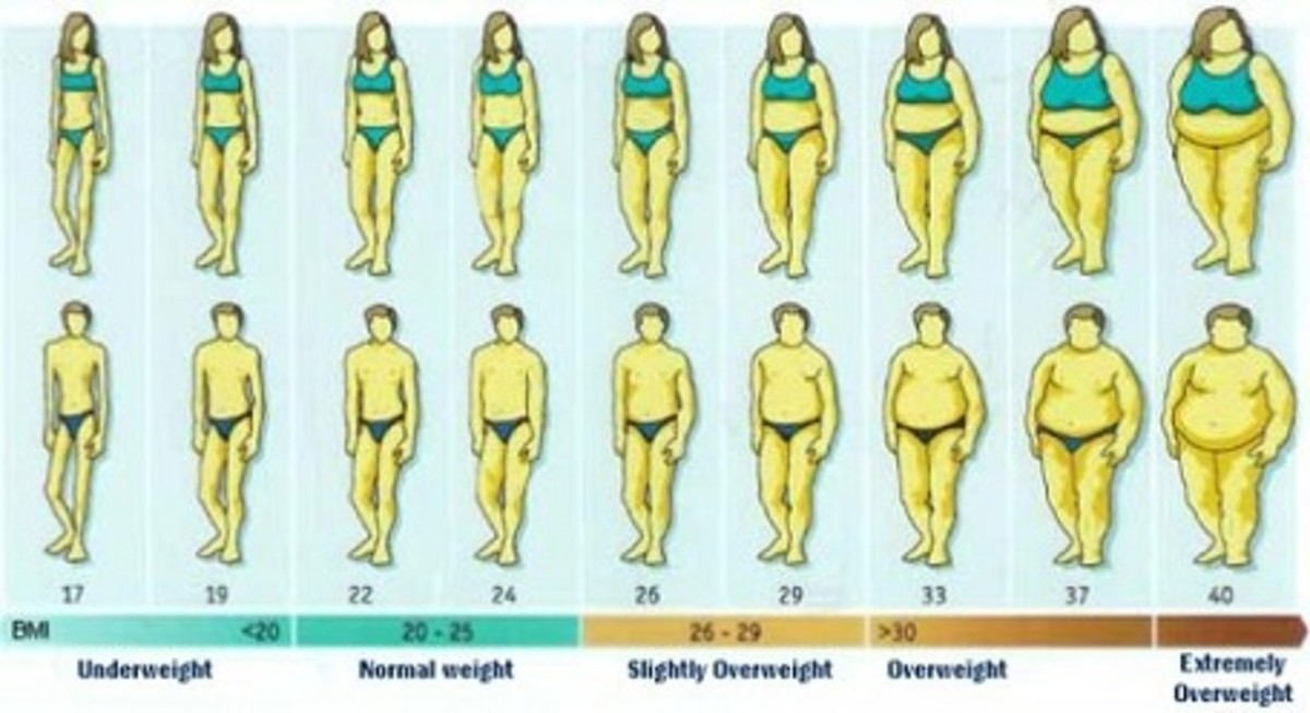 colorful poster of multiple men and women and different categories of weight