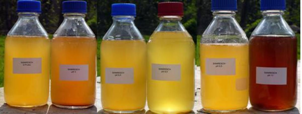 Urine (Pee) Colors Indicate Disease or Health Problems