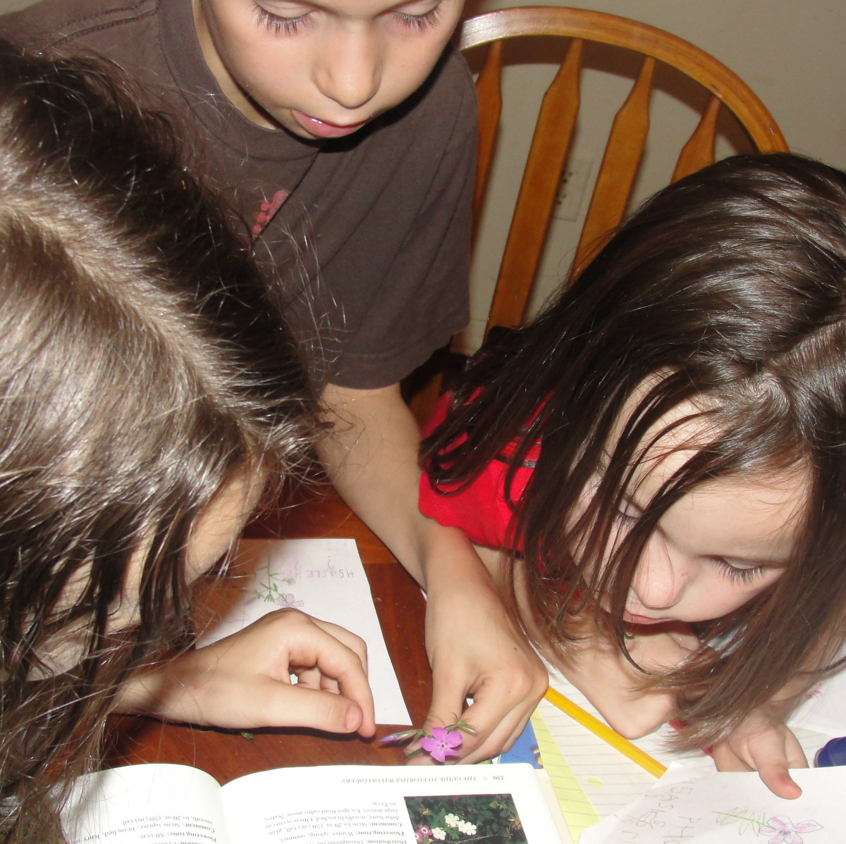 How I Homeschool with Seven Children