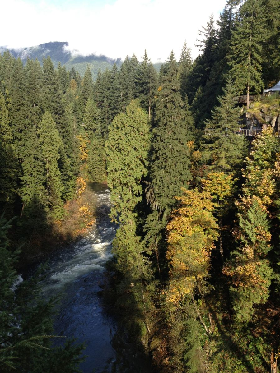 View of the Capilano River from the bridge.