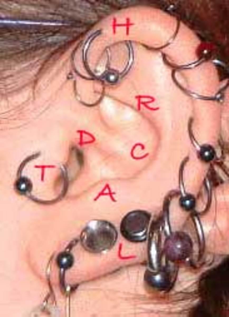 Ear piercings can go almost anywhere on the ear these days. H = Helix, R = Rook, C = Conch, D = Daith, T = Tragus, A = Antitragus, L = Lobe.