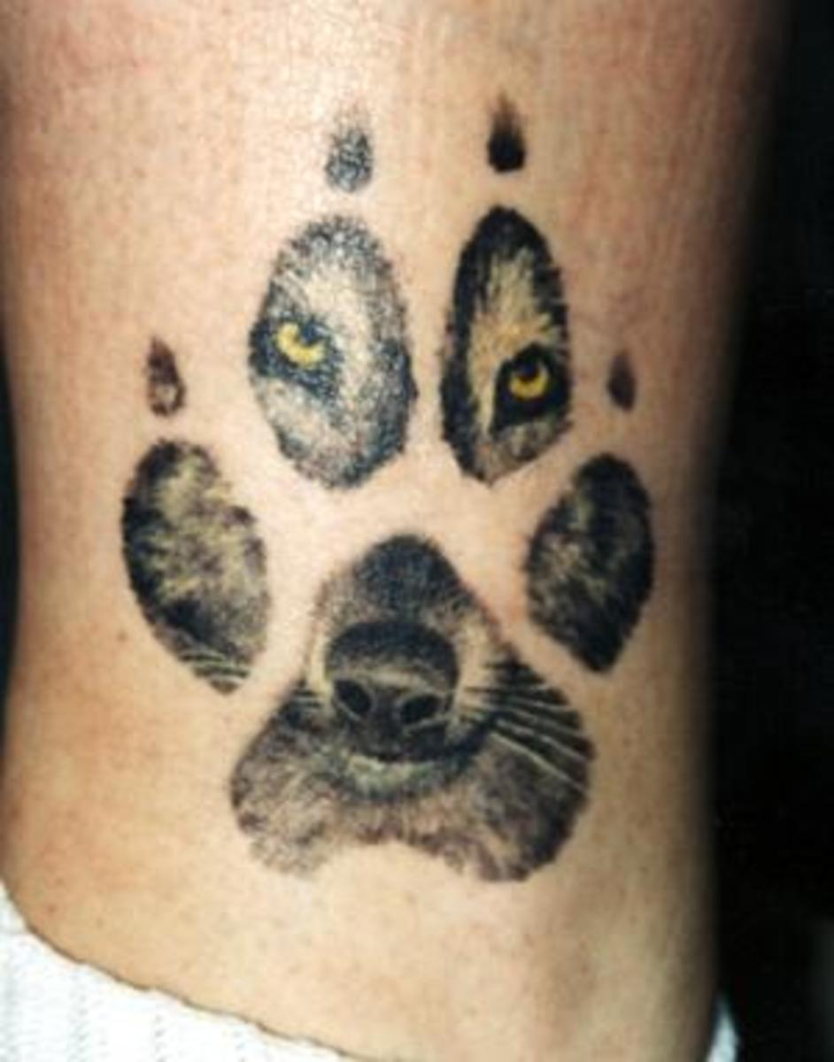 Wolf Looking Through Paw Tattoo