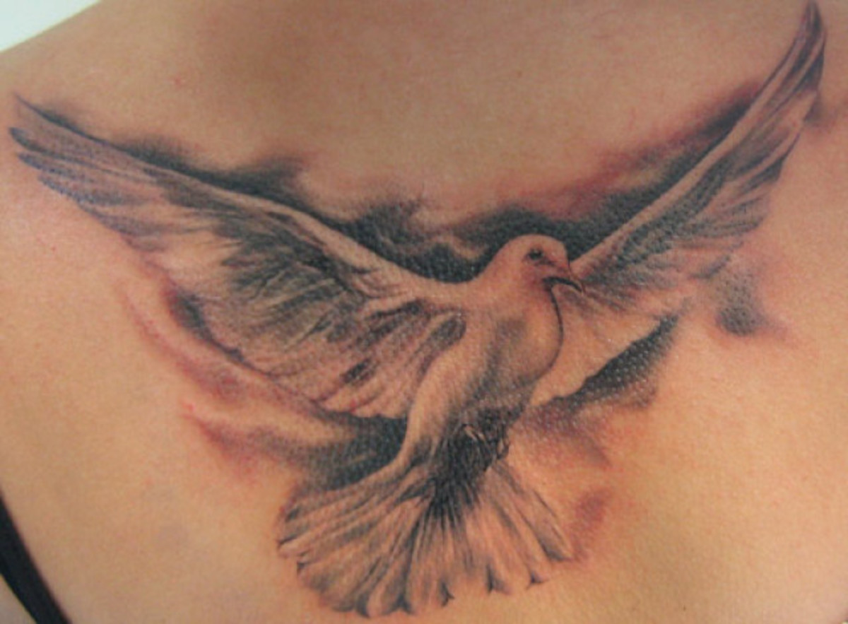 Large dove tattoo.