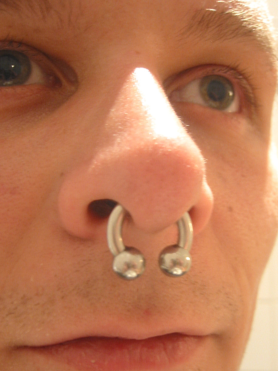 A pierced septum with large gauge jewelry.