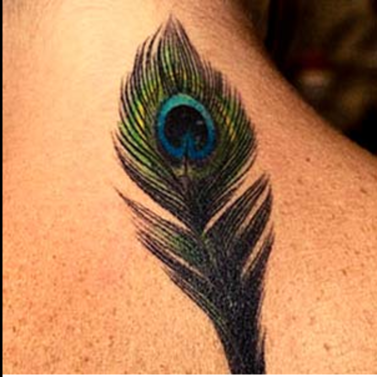 1eaf03856 Feather Tattoos: Designs, Ideas, and Meanings | TatRing