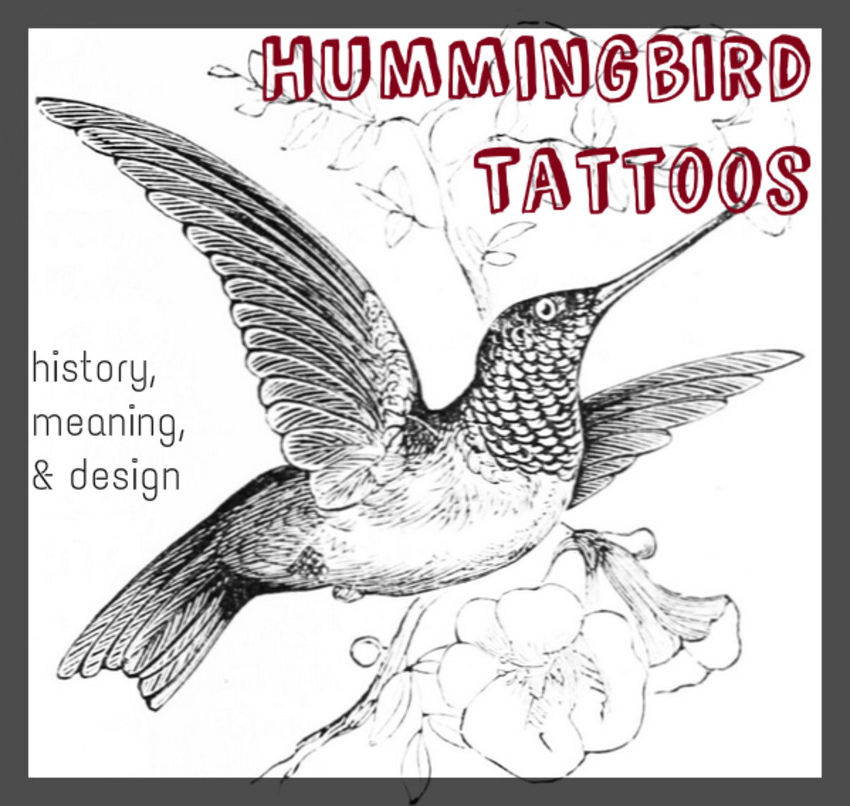 Hummingbird Tattoos: History, Meaning, & Design