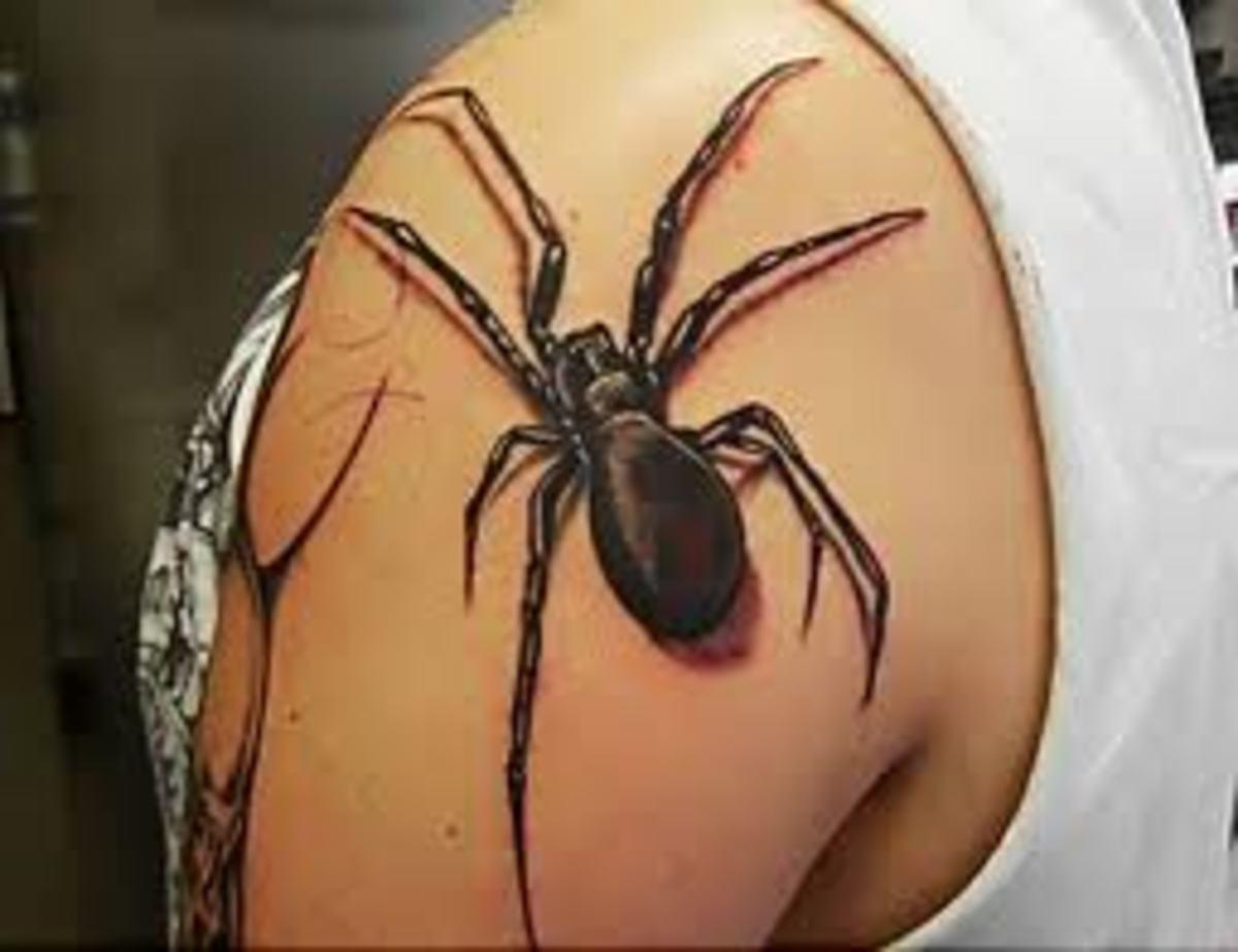 Black spider on shoulder