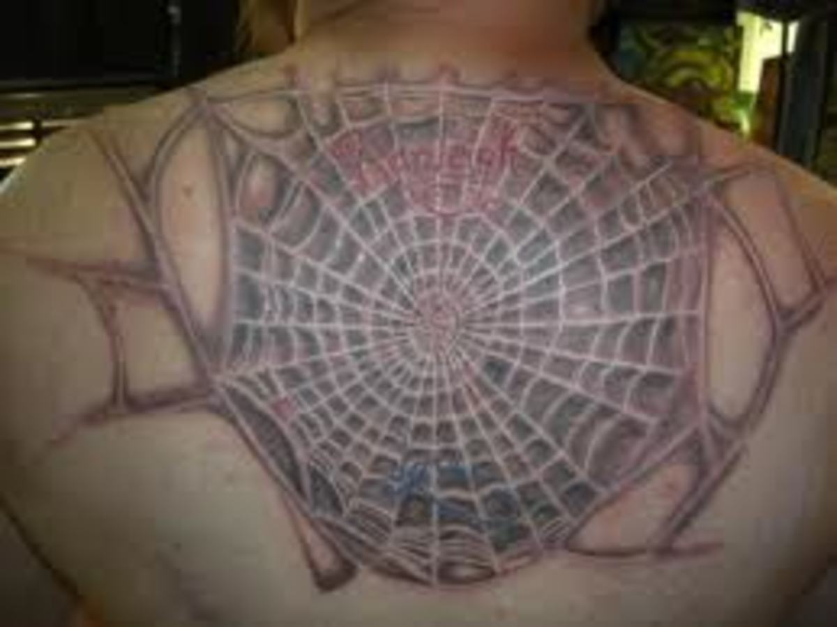 Web in twigs
