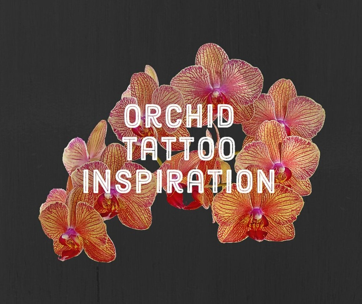 Orchid Tattoo Ideas, Designs, and Meanings