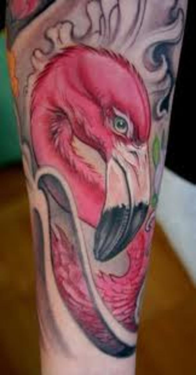 Flamingo Tattoos And Meanings