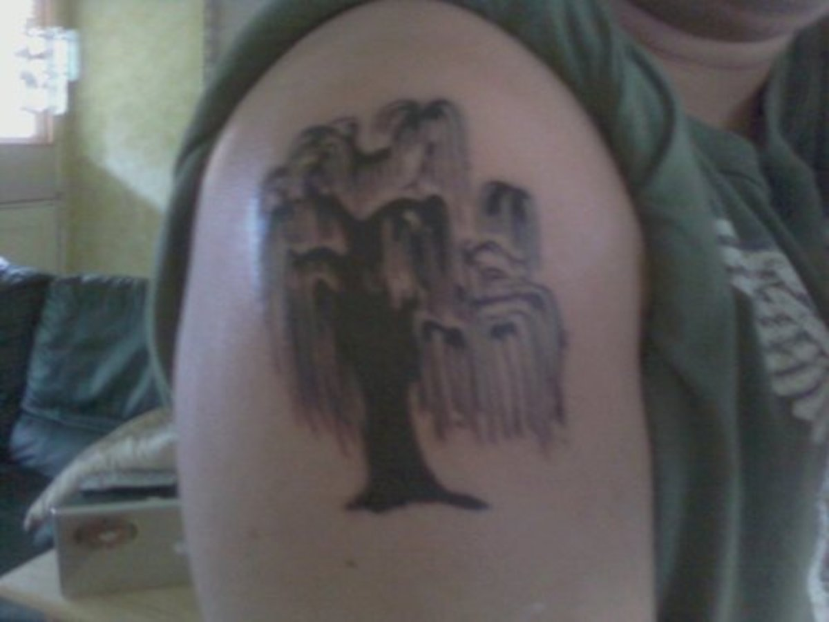 A Weeping Willow tattoo placed on the shoulder.