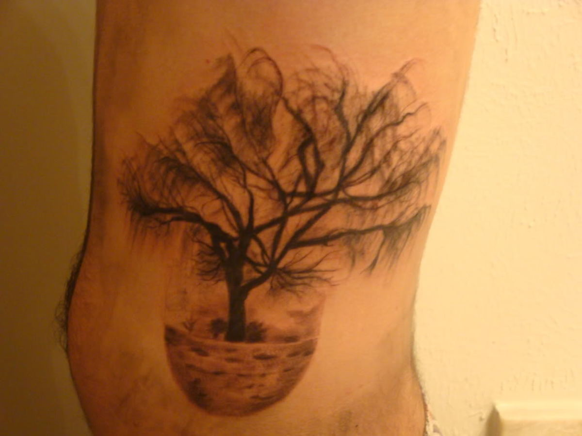 Weeping willow tattoo designs tatring for Willow tree tattoo