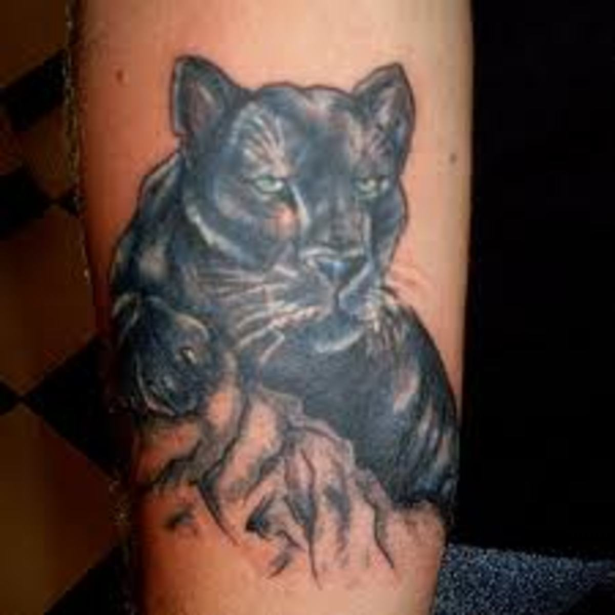 Panther Tattoo Designs and Meanings | TatRing