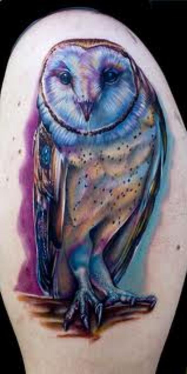 Pretty flying owl tattoo - photo#3