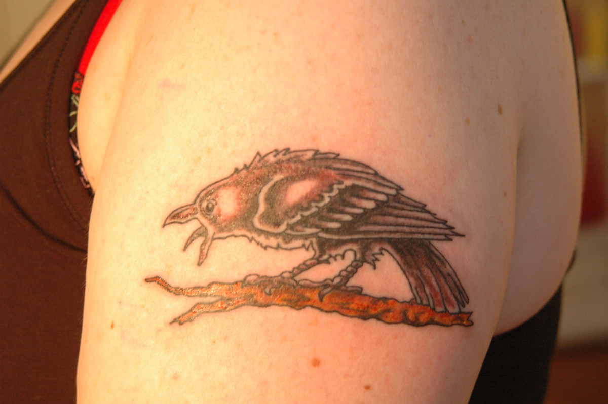 Raven tattoo.