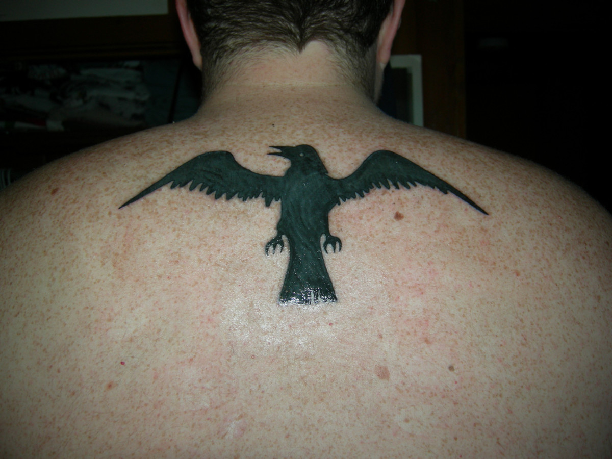 Raven tattoo on upper back.