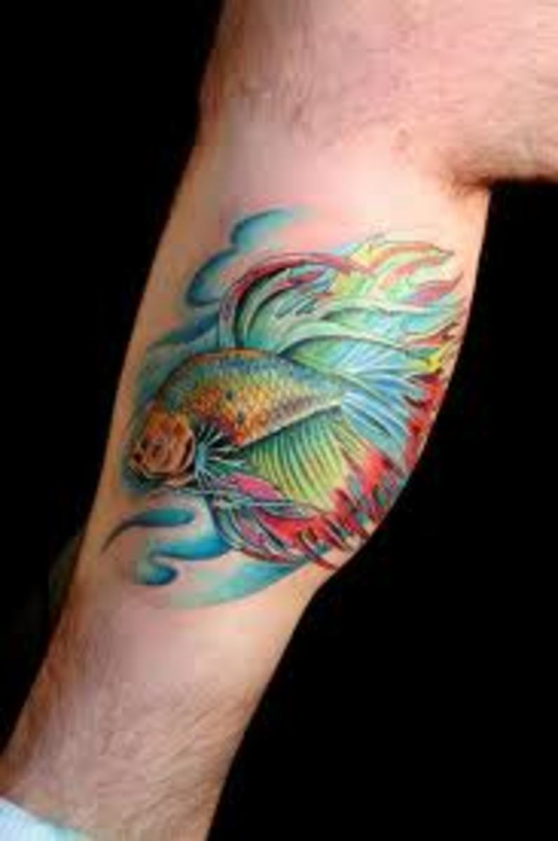 Beta Fish Tattoos And Designs-Beta Fish Tattoo Meanings And Ideas-Fighting Fish Tattoos