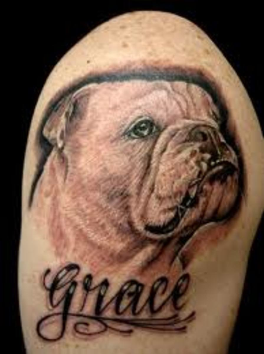 bulldog tattoos and designs bulldog tattoo meanings and ideas facts about the bulldog. Black Bedroom Furniture Sets. Home Design Ideas
