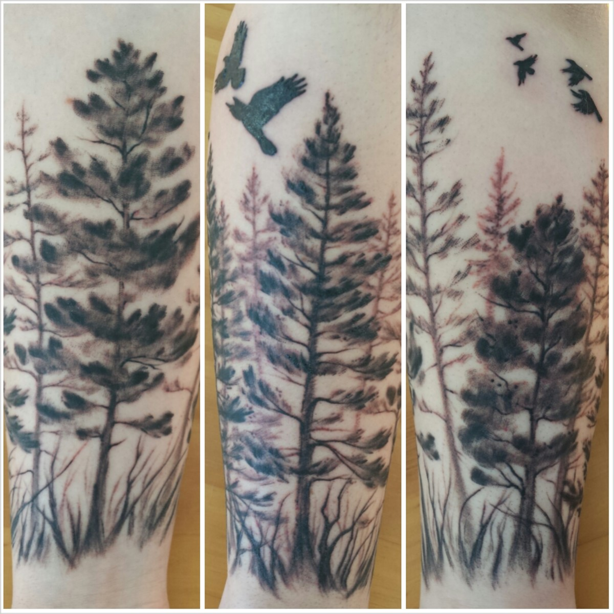 Pine tree forearm tattoo.