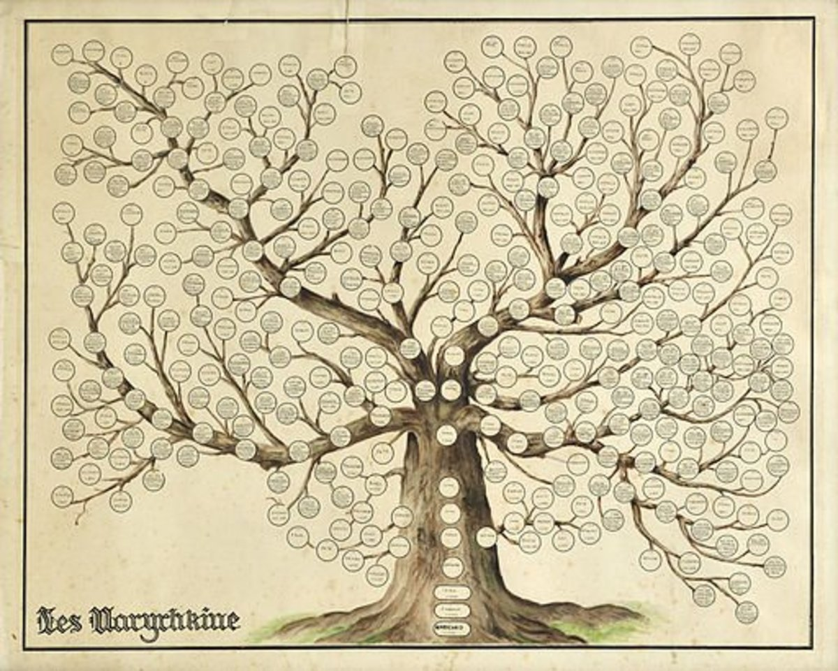 The Family Tree.